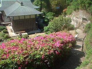 写真140530fri 仏行寺庭園.jpg