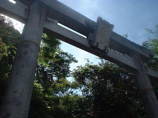 写真140606fri 三嶋神社鳥居.jpg