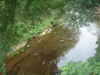 写真140829fri 蛭子神社そばの滑川.jpg