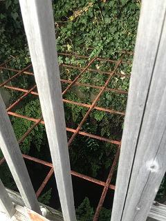 写真141107fri 六角の井.jpg