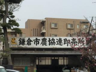 写真150410fri 鎌倉市農協連即売所.jpg