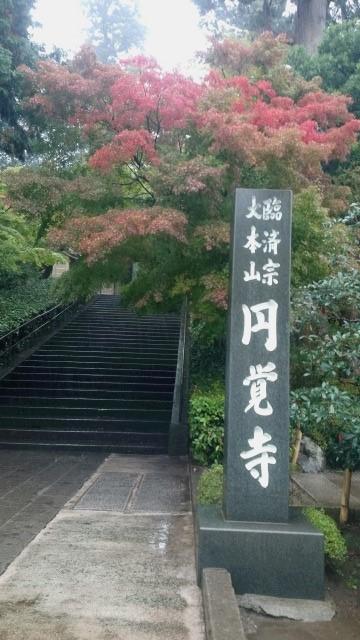 写真151113fri 色づく鎌倉・円覚寺.jpg