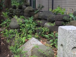 写真160219fri 和田塚五輪塔.jpg