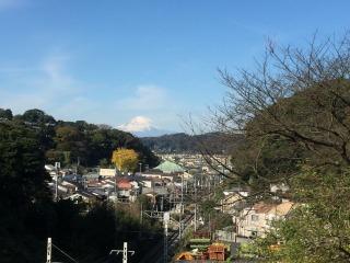 写真160226fri 名越切通へ向かう坂.jpg