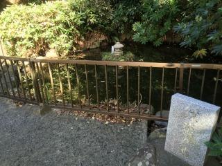 写真160408fri 岩殿寺・鏡花の池.jpg