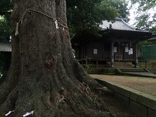 写真160826fri 五霊神社.jpg